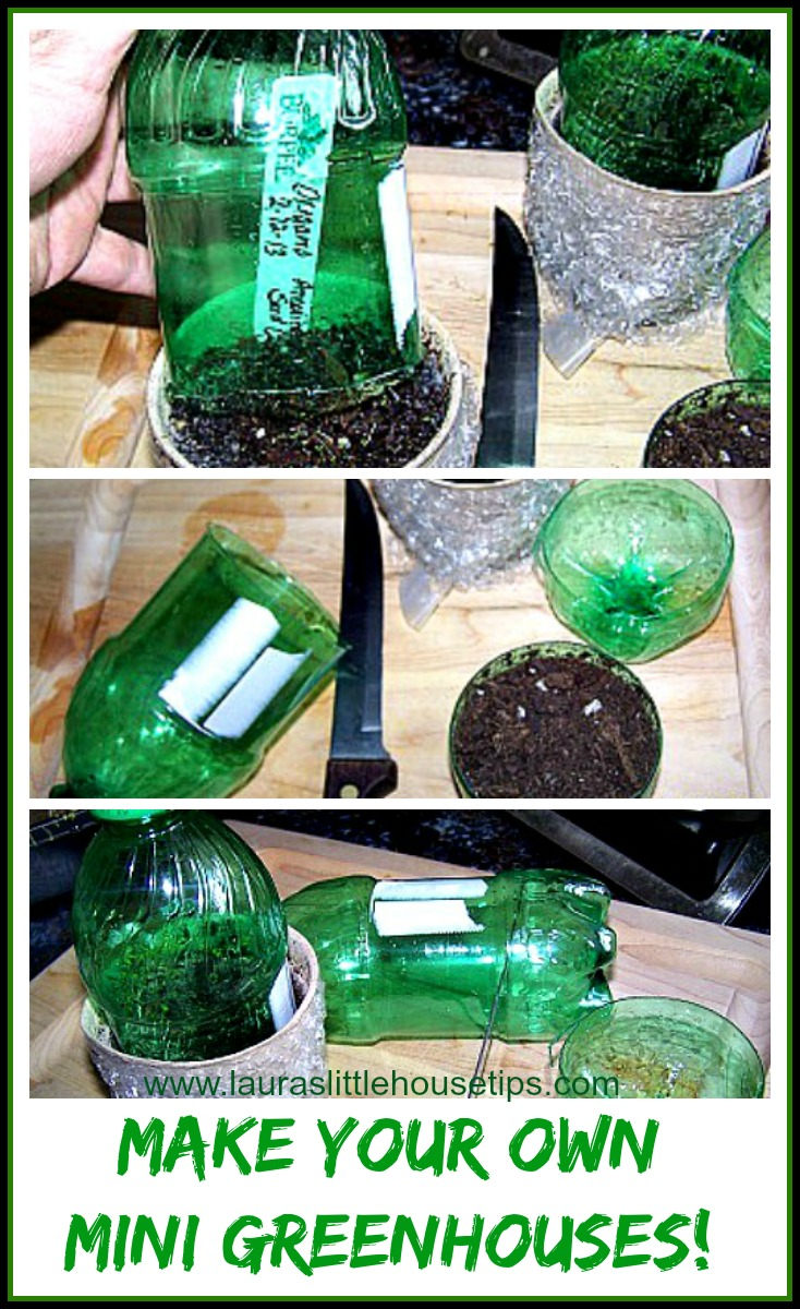 Make your own mini greenhouses diy for seedlings laura for Custom build your own home
