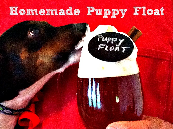 homemade puppy float 1